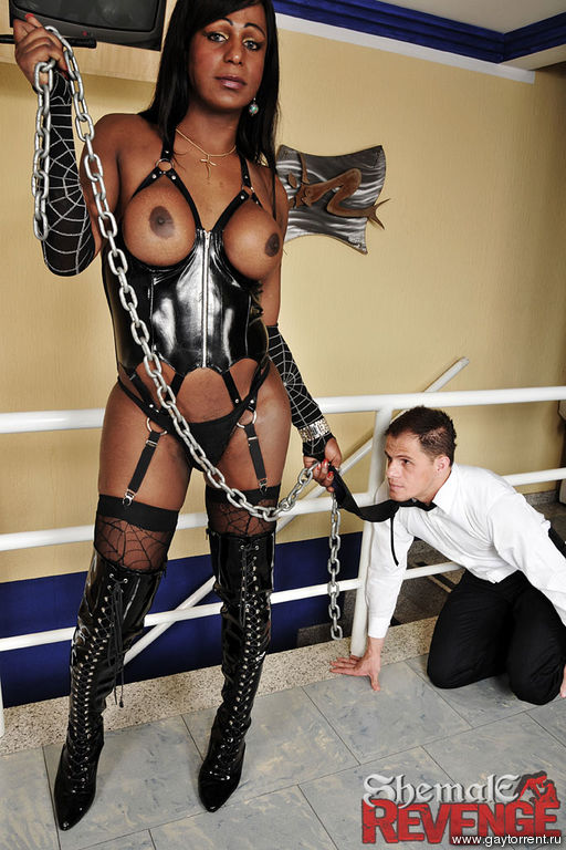 Free Shemale Dominatrix Movies 81