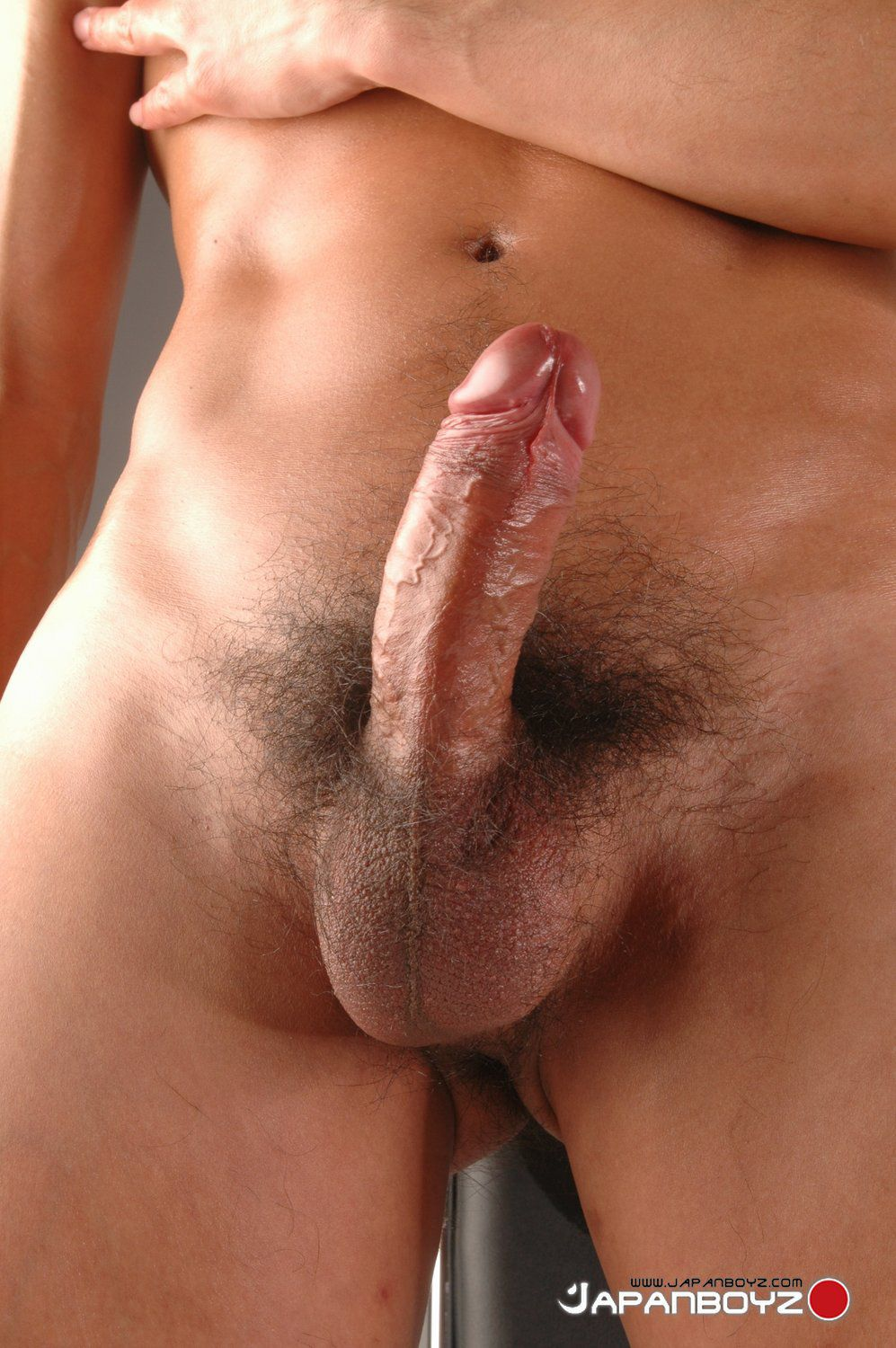 gay pics torrent